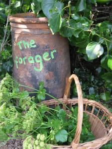 The Forager (2)