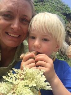 eating elderflower